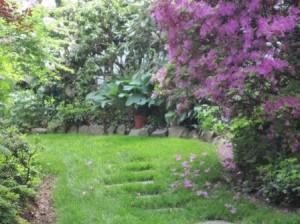 """Spring in Doylestown, Bucks County, PA"""